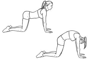 Rug strek oefeningen